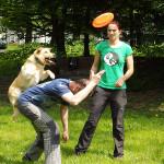 Seminář dog frisbee pro začátečníky